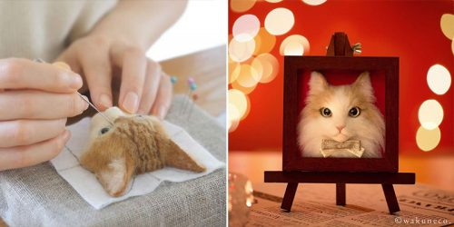 Hyper-Realistic Framed 3D Cat Portraits Out of Felted Wool