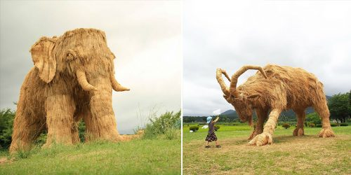 Giants of Rice Straws Rise Again in Japan's Wara Art Festival