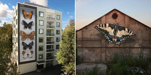 Colossus Butterfly Murals by Mantra