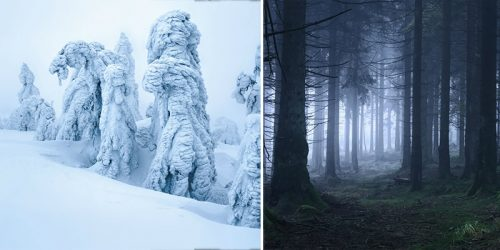 German Photographer Honoring the Final Season of Games of Thrones