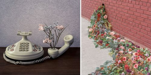 Portraits 'As Usual' by Brooke DiDonato Might Not Be as Usual as You Might Think