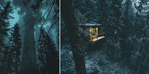 Gloomy Forest Photography by Dylan Furst