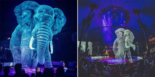 Holograms Replaced Real Animals for a Cruelty-Free Circus Show