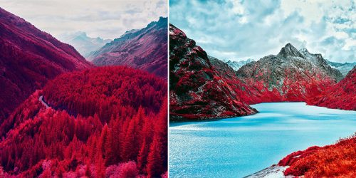 Vivid Pink and Red Landscapes in Zak van Biljon's Stunning Infrared Photography