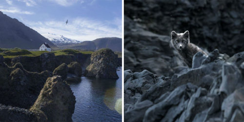 Young Photographer Circles 3 Times Entire Iceland Capturing Surreal Sights
