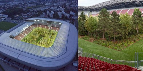 'For Forest' – Football Stadium in Austria Transformed into Forest of 300 Trees