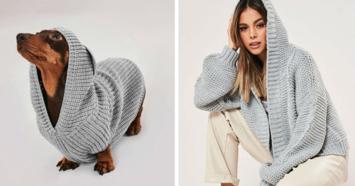 Fashion Retailer Missguided Releases Matching Sweaters for You and Your Pooch