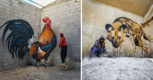 Anamorphic Street Art – Graffiti Have Never Been So Alive
