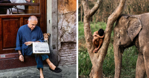 """Steve McCurry. Animals"" New Photo Book – Relationship Between Animals and Humans"