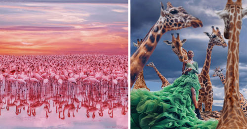 Dreamt of Flamingos but Met the Spirit of Kenya – Glorious Photography by Kristina Makeeva