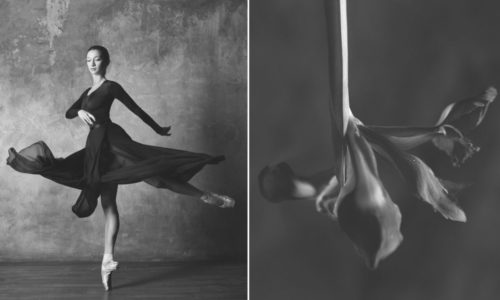 """Ballerina and Flowers"" – Embodiments of Fragility and Gracefulness"