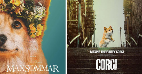 Oscar-Nominated Flicks with a Corgi Twist