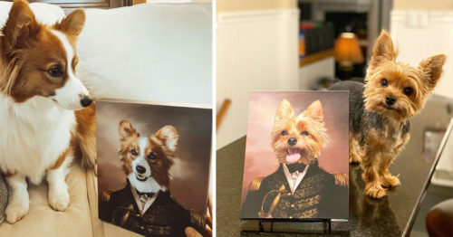 Crown & Paw Turns Your Pet Into a Renaissance Masterpiece