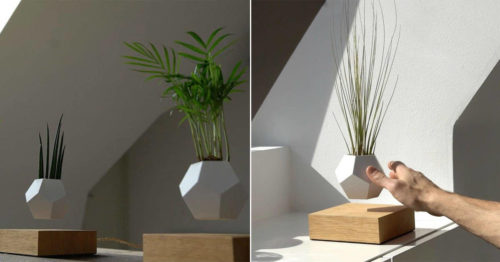 Futuristic Levitating Magnetic Life Planter by Flyte