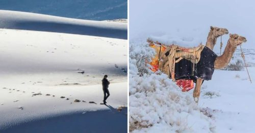 The Sahara Desert Under Snowfall Once Again [Another Climate Change Alert]